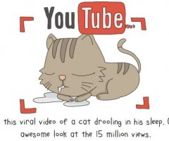 The State of Internet, Explained With Cats Pics