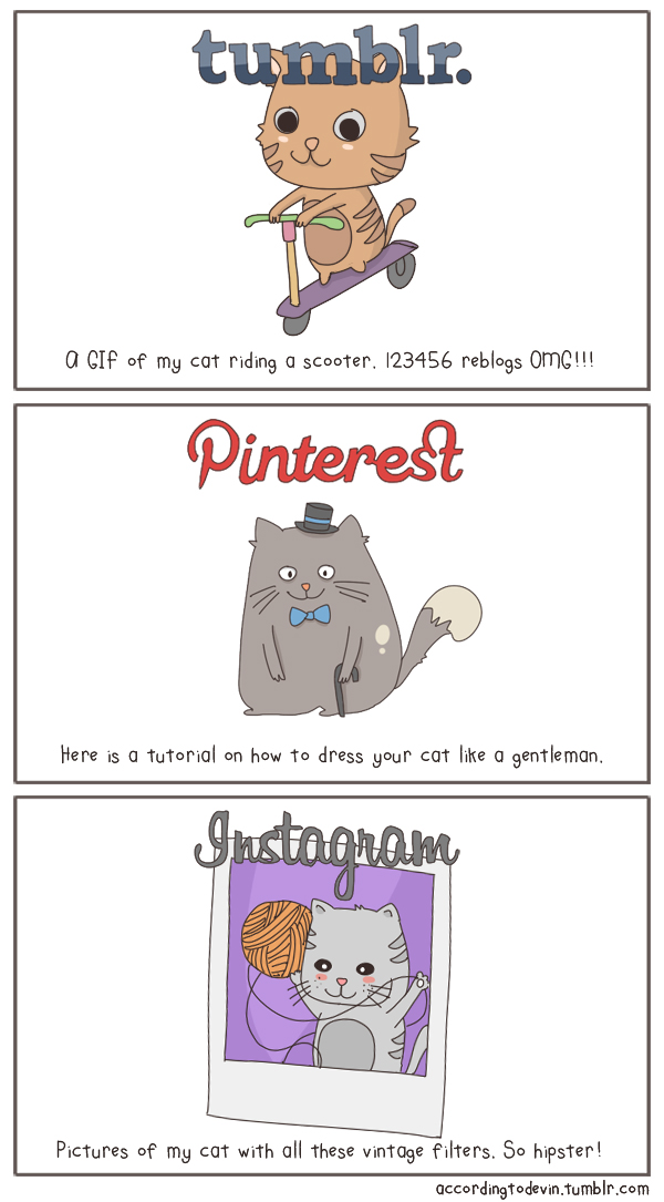 The State of Internet, Explained With Cats pictures 2