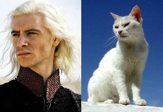Viserys Targaryen
