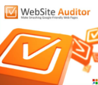 Website-Auditor