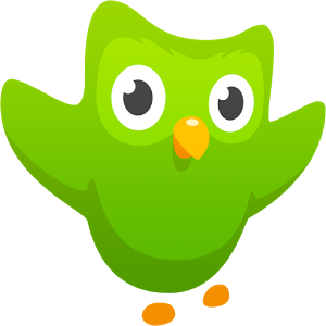 duolingo android app