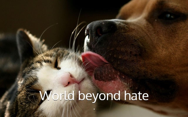 world beyond hate
