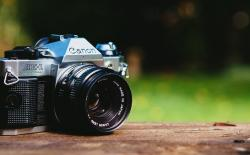 Find Stock Photos And Royalty Free Images For Blogs and Websites