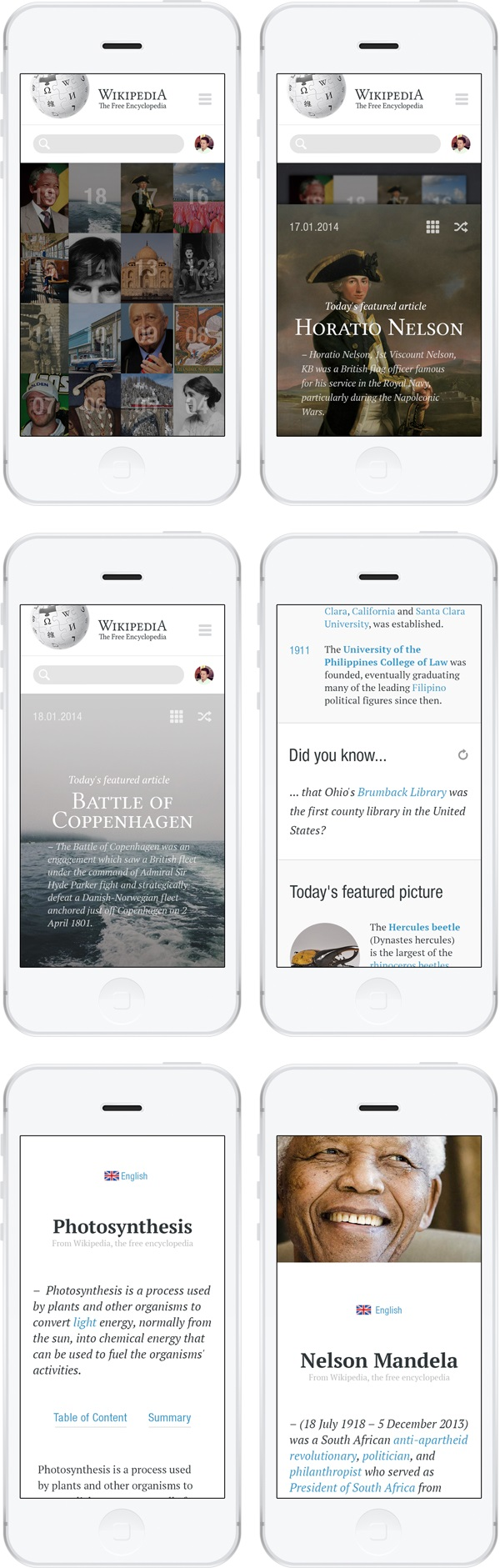 w13- Redesign Concept For Wikipedia