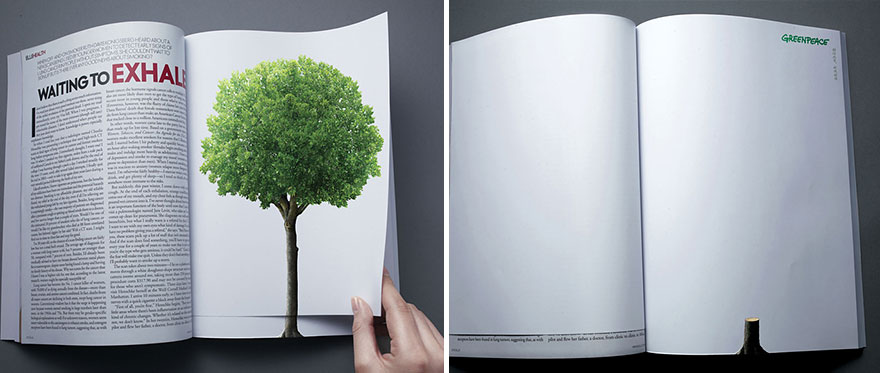 With Every Turn of A Page, Deforestation continues