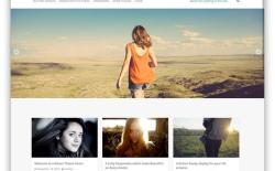 Top 90 Best Free WordPress Themes for 2015