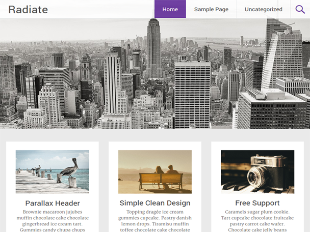 radiate-free-wordpress-theme