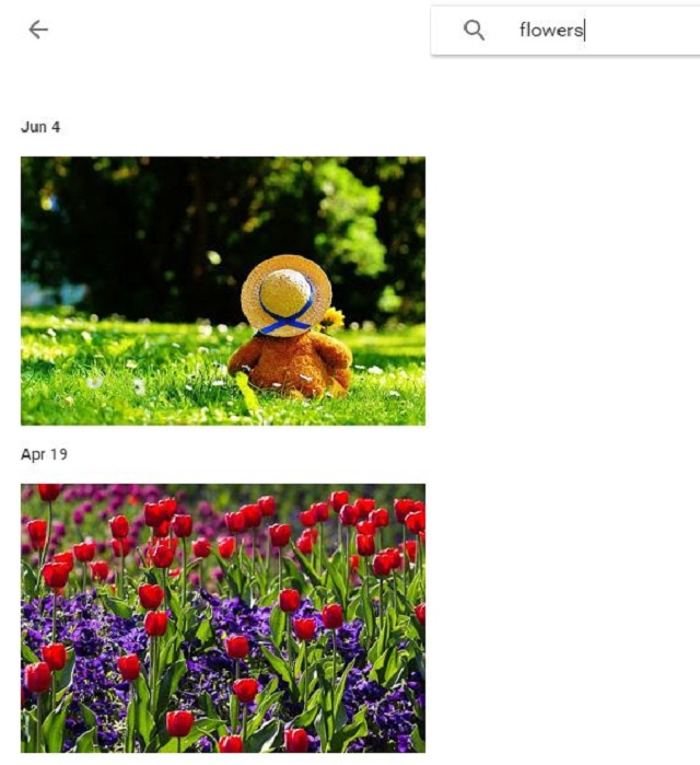 photo-search-3