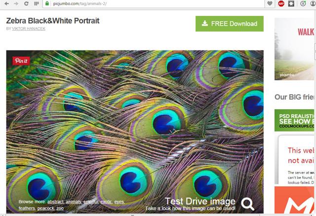 free-stock-photos-websites (8)