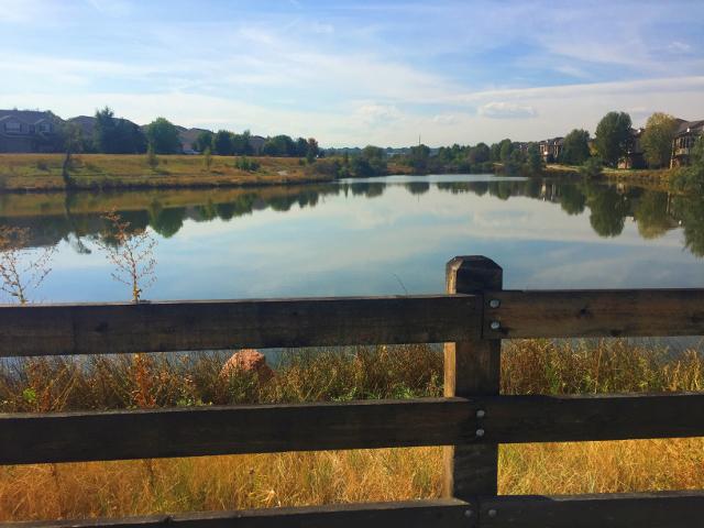 lambertson-lake