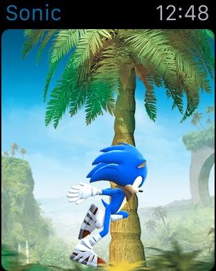 Sonic Dash 2 (1)
