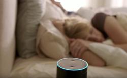 Amazon Echo Alternatives