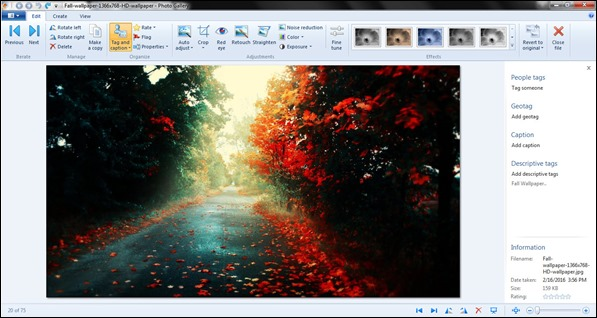 Windows Photo Gallery Layout