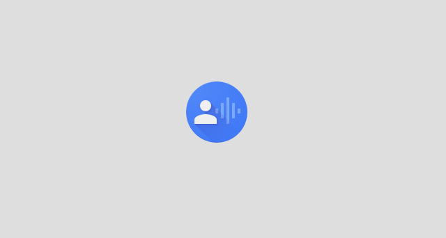 How to install and use Google Voice Access App