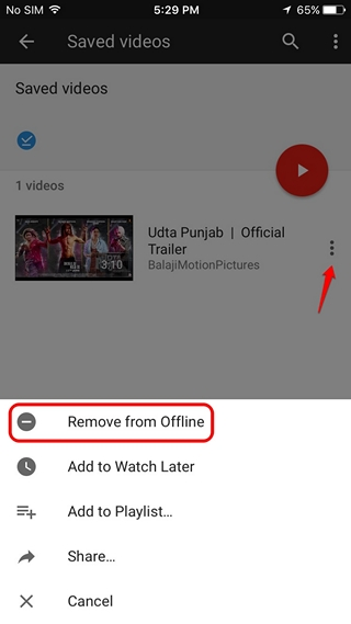 iPhone remove offline videos