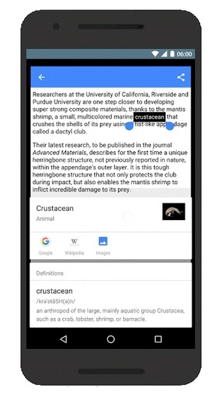 Google Now on Tap Dictionary