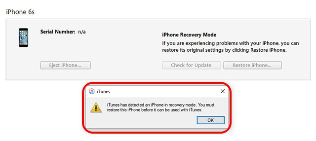 iTunes iPhone Recovery Mode message