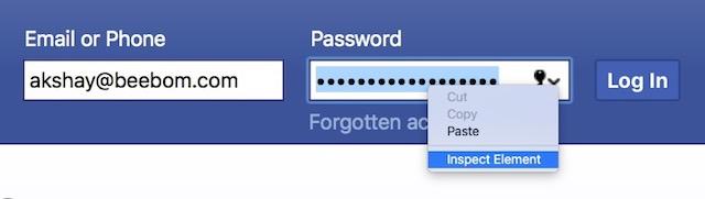 view password hidden behind asterisk safari menu inspect element