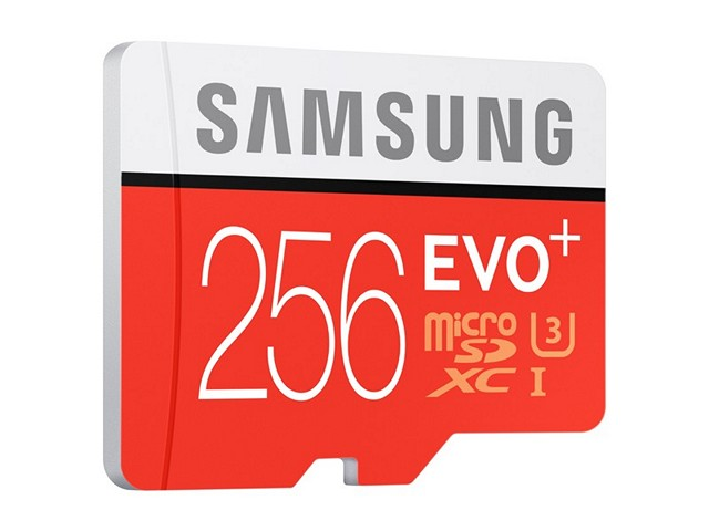 Samsung Evo+ 256 GB microSD