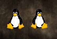 multiple-linux-distros