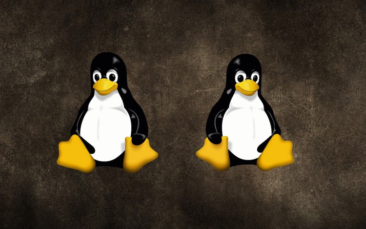 How to Multi Boot Distros using Linux Containers | Beebom