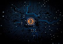 4 Different Types of Bitcoin Wallets You Can Use