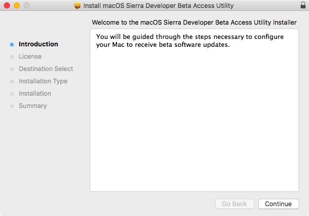 install developer beta profile