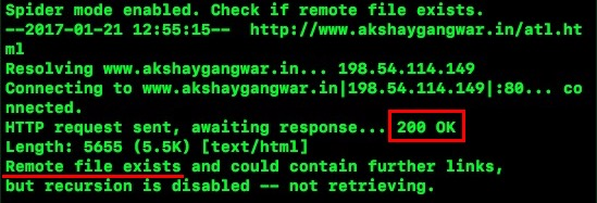 How to Use Wget to Download Anything from the Internet | Beebom
