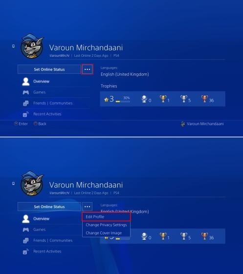 Profil Öffne PS4