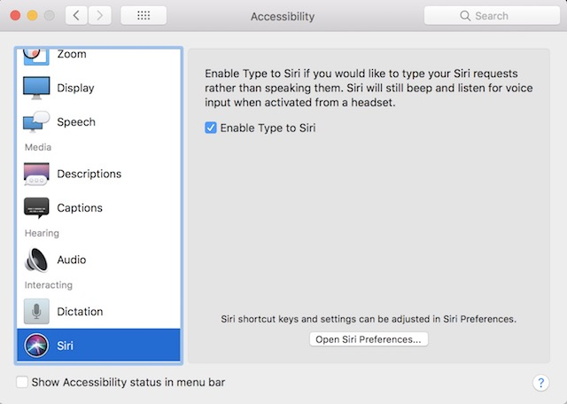 12. Type to Siri