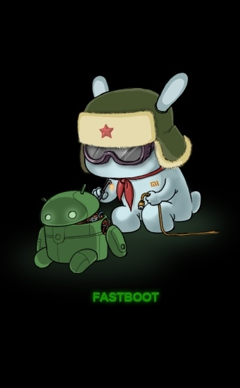 logo fastboot