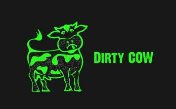 Dirty Cow Vulnerability How ZNIU Is Using It to Attack Android