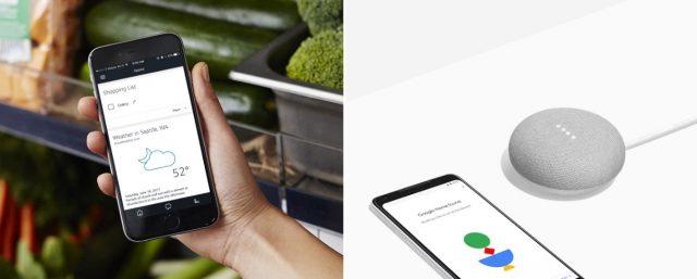 Alexa app vs Google Home app