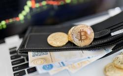 7 Best Hardware Bitcoin Wallets You Can Buy