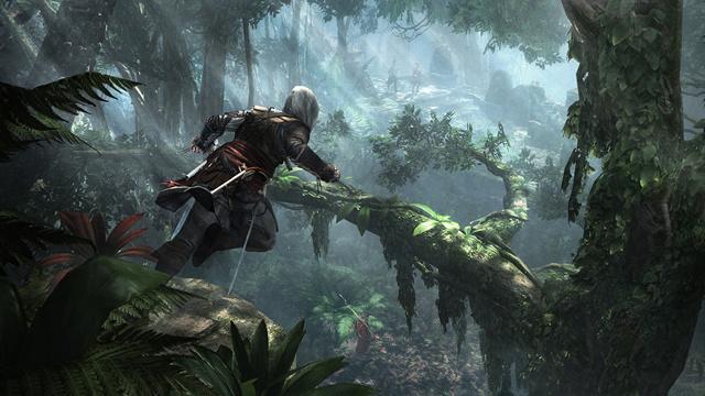 Assassins Creed Black Flag game