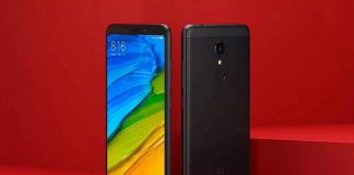 Redmi 5 and Redmi 5 Plus Revealed