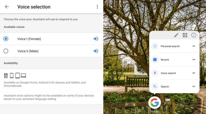 Google App UI Changes