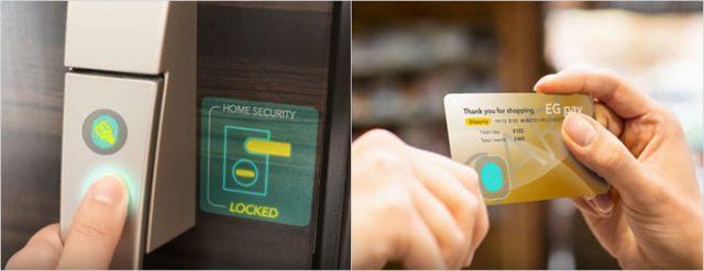 JDI Shows off a New Transparent Glass Fingerprint Scanner