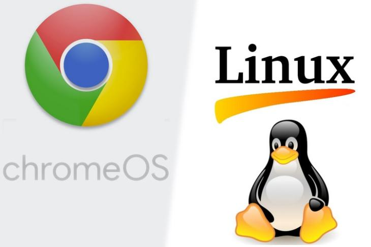 Chrome OS 66 Might Bring Support for Running Linux Apps on a Chromebook