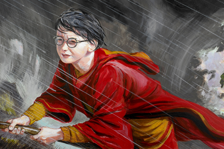 Harry Potter in Google Arts & Culture App (Image: Google)