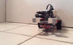 robot with worm brain
