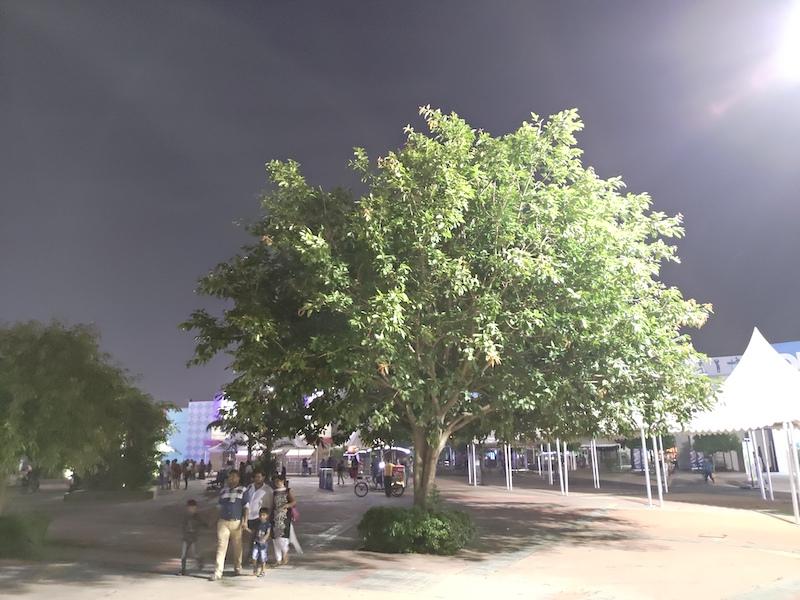 Asus ZenFone 5Z Low Light00004
