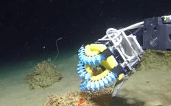 robot_underwater