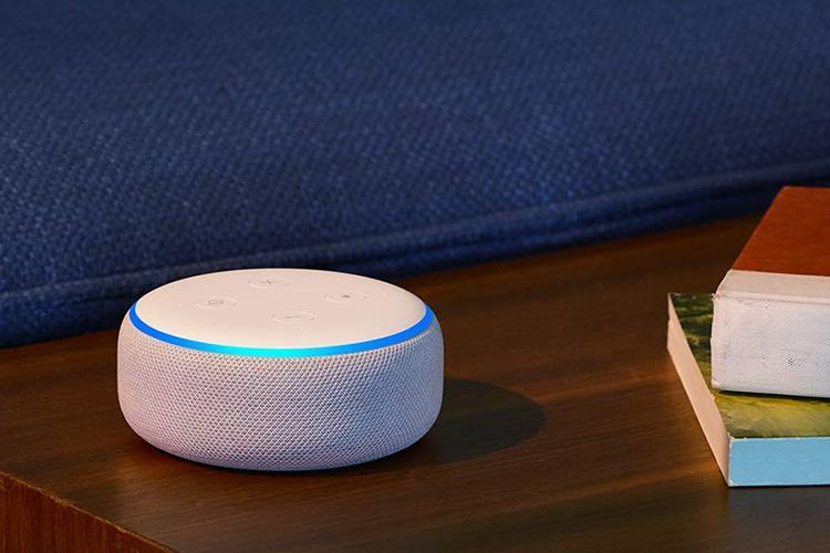 Amazon Echo Leads India's Smart Speakers Market