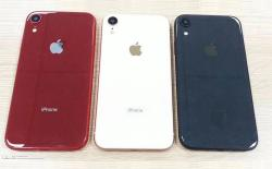 iPhone lcd variant leaked image