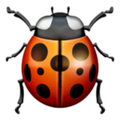 ž Lady Beetle