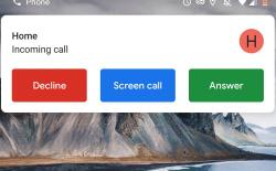 Screen call feature on Pixel 2
