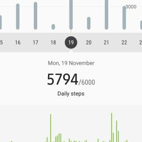 Screenshot_20181126-190315_Samsung Health