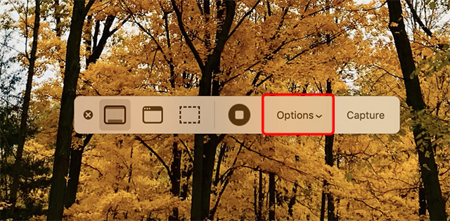 macOS Mojave screenshot tool showing options