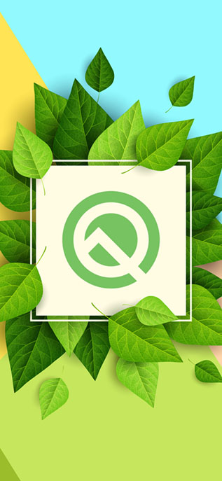 Download These Stunning Android Q Wallpapers 'Made By Beebom